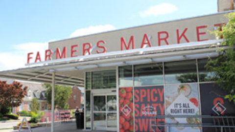 Ardmore Seafood Market